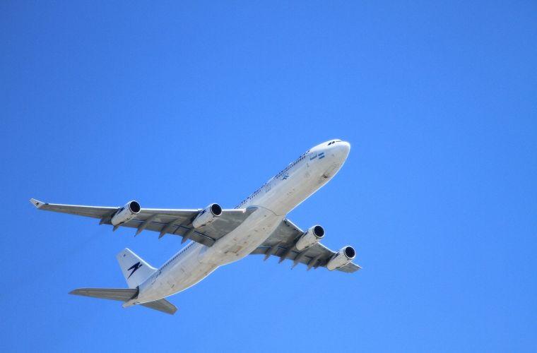 Compañías aéreas para viajar con animales
